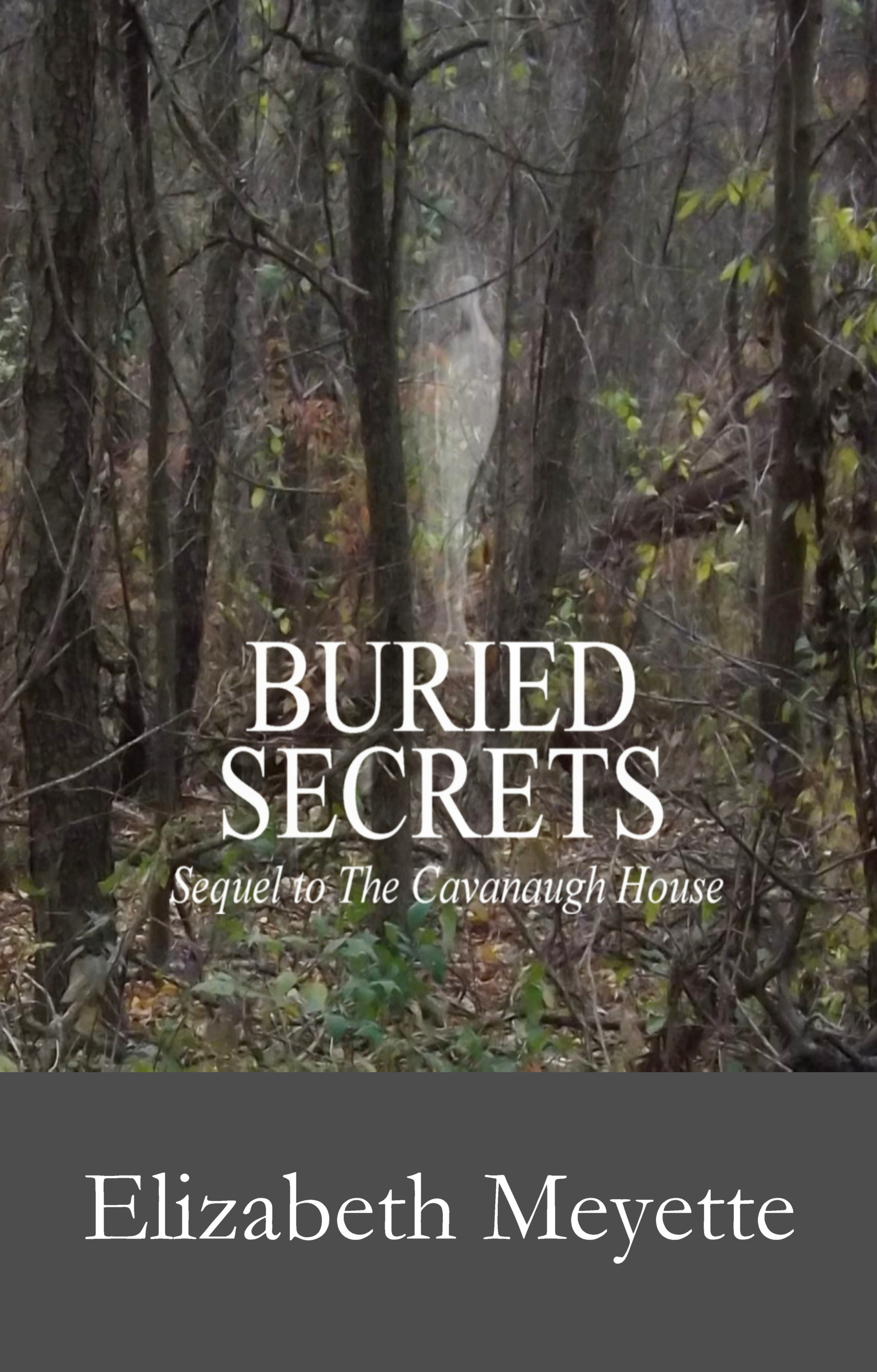 Buried Secrets: Sequel to The Cavanaugh House